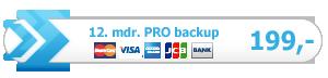 Remy PRO online backup