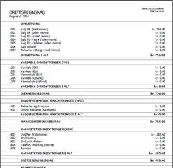 Regnskabs udskrift i Regnskabsprogram PRO
